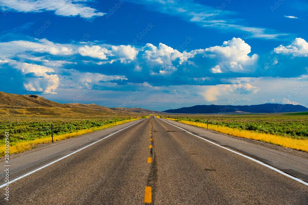 Fototapety, obrazy: Straight roadway leading on forever.