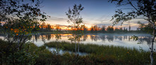 Beautiful Summer Northern Siberian Wild Landscape, A Lonely Trees By A Lake Or Swamp, Panoramic View