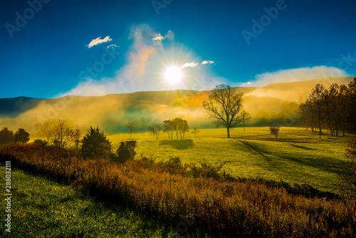 Fotografie, Obraz Mists Rising From The Field