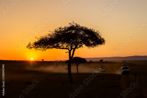African sunrise with acacia trees and safari cars in Masai Mara, Kenya. Savannah background in Africa. Safari concept