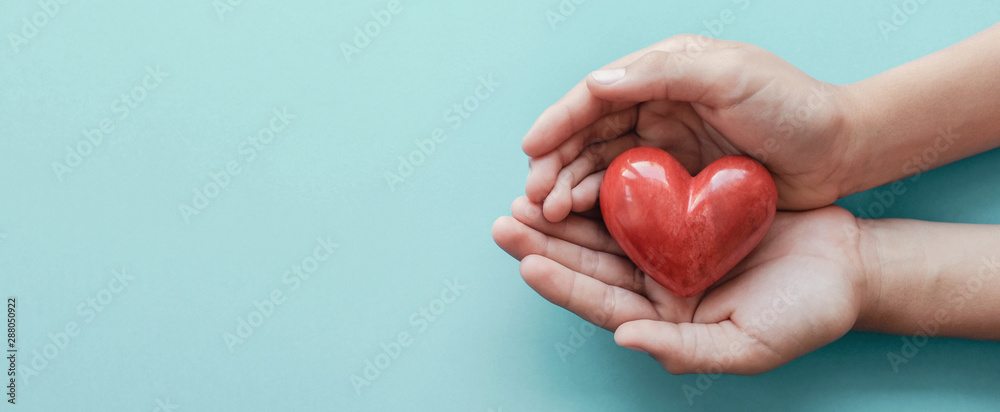Fototapeta hands holding red heart on blue background, health care, love, organ donation, family insurance and CSR concept, world heart day, world health day, fair trade
