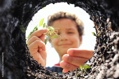 niño plantando árbol planting tree reforestando reforesting Canvas Print
