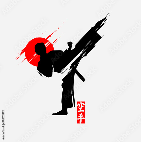 Martial arts silhouette character logo illustration Wallpaper Mural