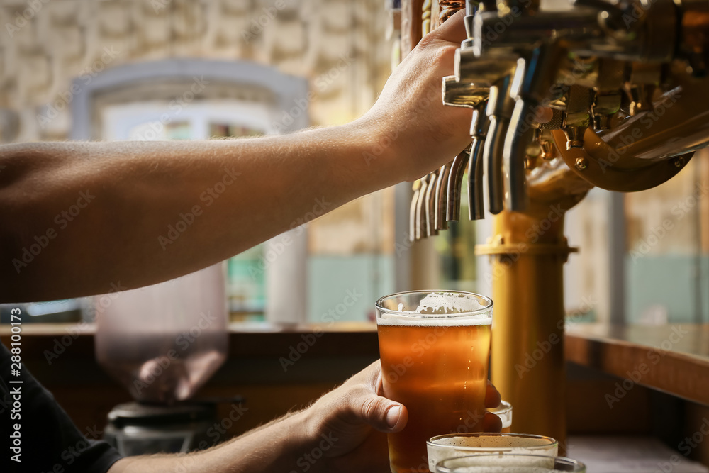 Fototapety, obrazy: Barman pouring fresh beer in glass, closeup