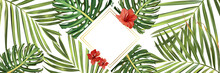 Tropical Background. Flower An...