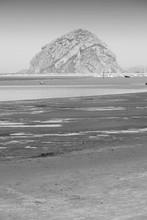 Morro Bay, California. Black A...