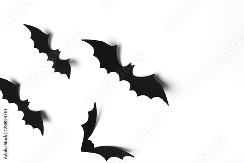 Collection of creepy bats Canvas Print