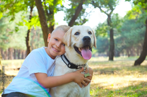 Portrait of cute blond boy hanging out with his pet friend labrador retriever out in the woods Tableau sur Toile