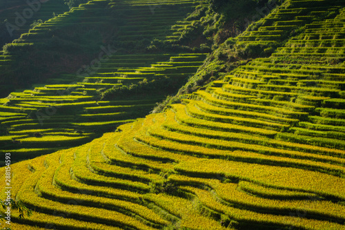La pose en embrasure Les champs de riz Beautiful landscape of rice paddy field terraced at SA PA is the travel destination attraction in Northwest Vietnam