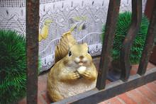 Big Squirrel With Acorn Nut Lo...