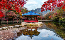 Naejangsan Mountain In Autumn South Korea