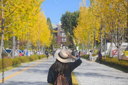 A woman is travel in the University in Korea during Autumn season Fototapeta
