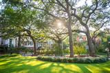 Fototapeta Sawanna - Bright scenic view of golden sun streaming through a canopy of grand oak trees in a green square in Savannah, Georgia, USA