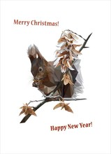 Winter Squirrel On A Branch Re...