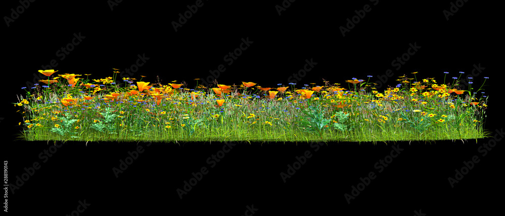 Fototapety, obrazy: Background illustration of green field of grass with flowers. 3D rendering. Useful for commercial banners and print