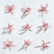 Tender Pink Orchids Flowers Pattern On A Gray Marble Background With Shadows. Top View.