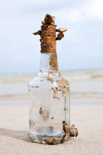Pirate Bottle Old Vintage Covered With Shells Clams On The Beach Of Tropic Island Long Time In Sea