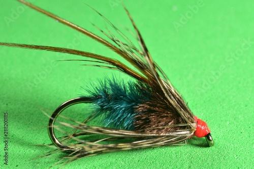 Fototapeta  Longhorn Sedge trout fly imitation