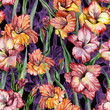 canvas print picture - Beautiful gladiolus flowers and leaves on black background. Seamless exotic floral pattern. Watercolor painting. Hand drawn illustration.