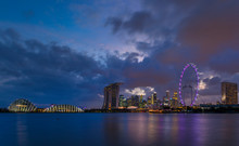 Gardens By The Bay And Skyline...