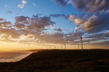 Coastal Wind Farm At Sunset