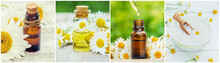 Collage Of Different Pictures Of Chamomile Flower Extracts. Homeopathy. Selective Focus.