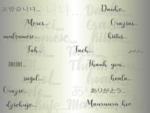Danke In Verschiedenen Sprache...