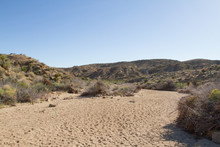 Soft Sandy Bottom Of A Desert Wash