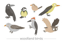 Vector Set Of Cartoon Style Hand Drawn Flat Funny Cuckoos, Woodpeckers, Owls, Raven, Wren. Cute Illustration Of Woodland Birds For Children's Design. .