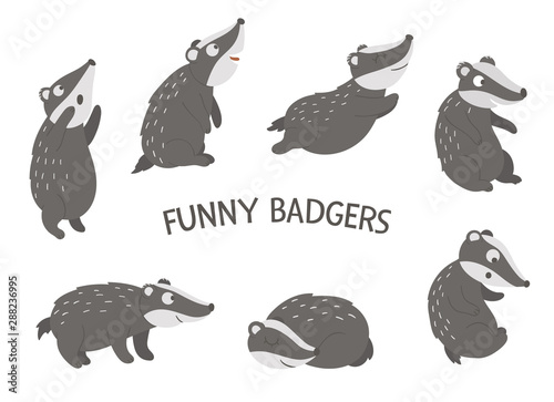 Vector set of cartoon style hand drawn flat funny badgers in different poses Fototapeta