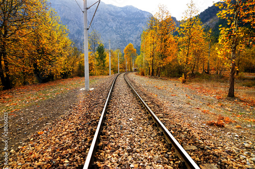 Canvas Prints Railroad Railroad tracks on mountainside landscape in between colorful autumn leaves and trees in forest of Mersin, Turkey