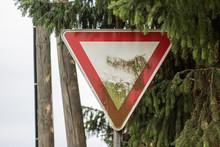 Straßenschild Mit Moos