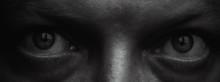 Macro Eyes Portrait. Evil Human Look. Scary Anger Eyes.