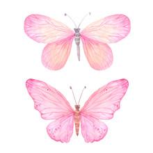 Watercolor Pink Butterflies Set