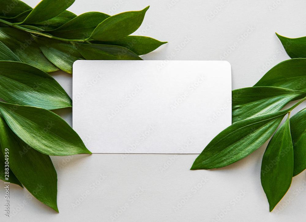 Fototapety, obrazy: Green leaves on gray background