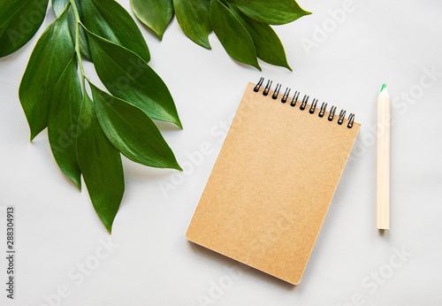 Obraz Craft notebook and green leaves - fototapety do salonu