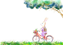 Hare On A Bicycle And Flowers ...