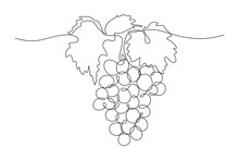 Grapes In Continuous Line Art ...
