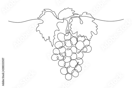 Fotografia, Obraz Grapes in continuous line art drawing style