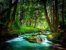 Beautiful Mountain Stream Flow...