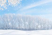 Verschneiter Wintertag