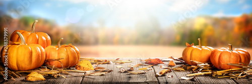 Garden Poster India Thanksgiving Pumpkins And Leaves On Rustic Wooden Table With Sunlight And Bokeh On Autumn Background - Thanksgiving / Harvest Concept