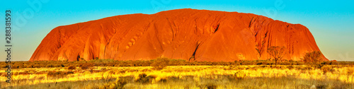 Fotomural  Banner panorama of red color of Uluru or Ayers Rock at sunset, the huge sandstone monolith in Uluru-Kata Tjuta National Park, icon of Australian outback or Red Centre