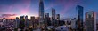 canvas print picture - Twilight with a pink and blue sunset over San Francisco skyline with Salesforce Tower in the middle and Salesforce park at the bottom