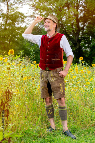Fotografiet handsome bavarian man in his 50s standing in a field of sunflowers