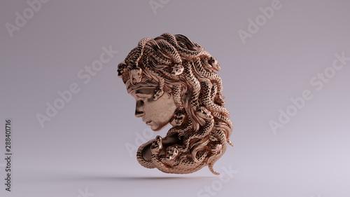 Cuadros en Lienzo Bronze Medusa Bas Relief 3d illustration 3d render