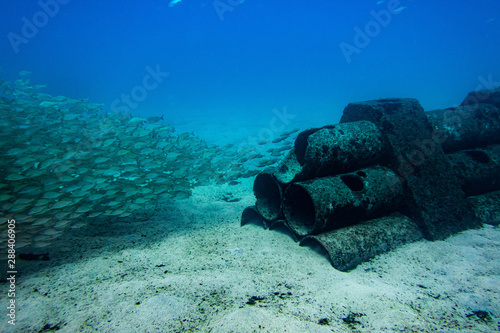 Poster Naufrage Scuba Diving Reef