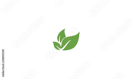 Tela  green leaves icon