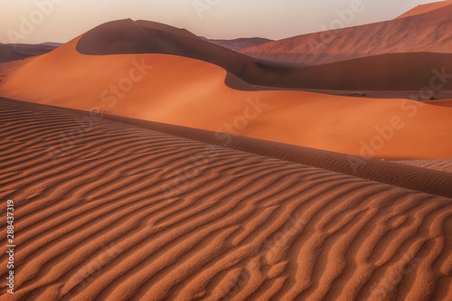 Foto auf AluDibond Ziegel Ripples, patterns and curves of large sand dunes in Namib Desert, Sossusvlei, Namibia.