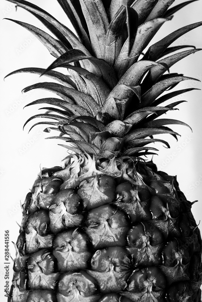 black and white abstract pineapple